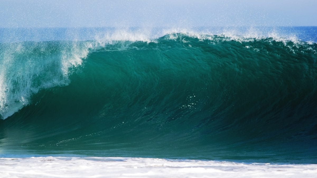 A large ocean wave.